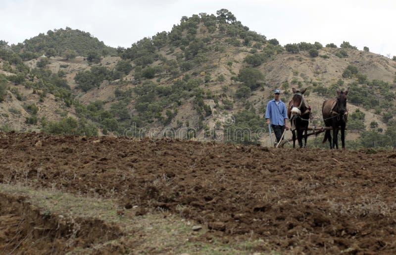 Le Maroc pastoral photographie stock libre de droits