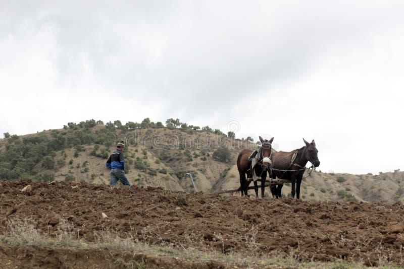 Le Maroc pastoral photographie stock