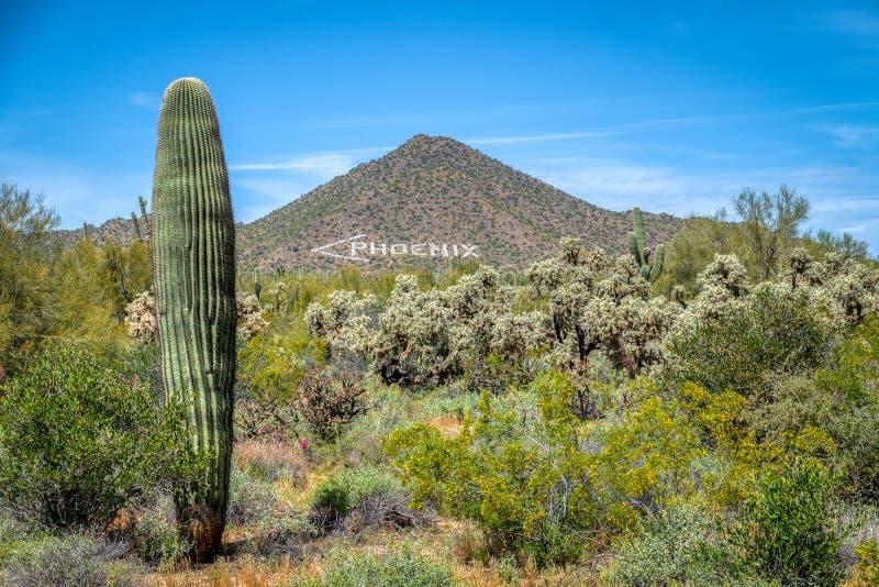 Le marqueur d'air de Phoenix photos stock