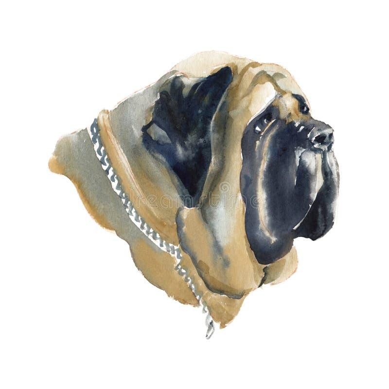Le mastiff anglais illustration libre de droits