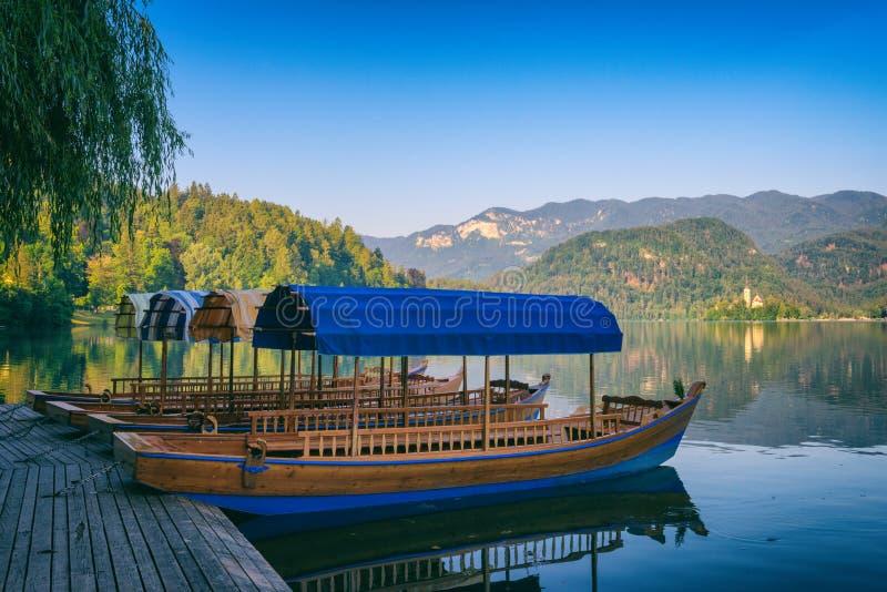 Le matin d'été sur le lac alpin a saigné, des embarcations de plaisance, des montagnes vertes et paysage de nature de ciel bleu,  images stock