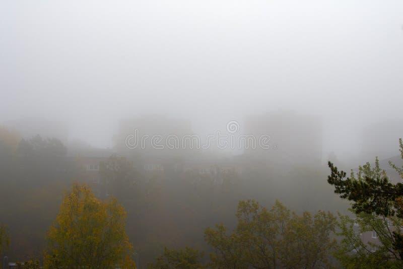 Le matin de Foggy à l'automne dans une banlieue photos stock