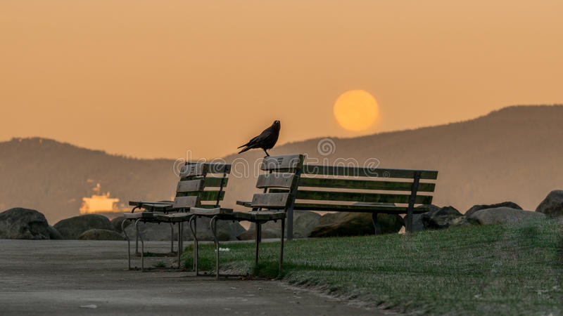 Le matin de pleine lune de novembre photo stock