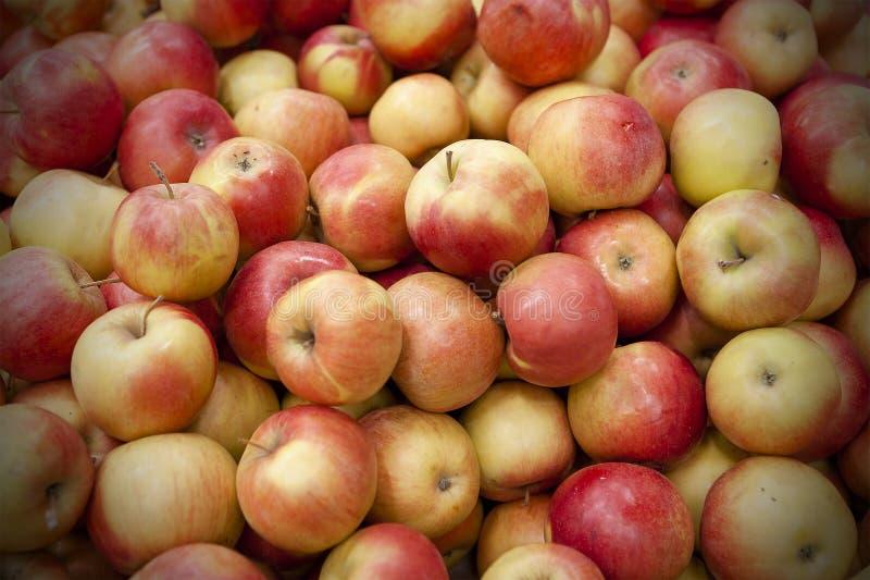 Le mele fresche hanno sparso fuori uno strato uguale immagini stock libere da diritti