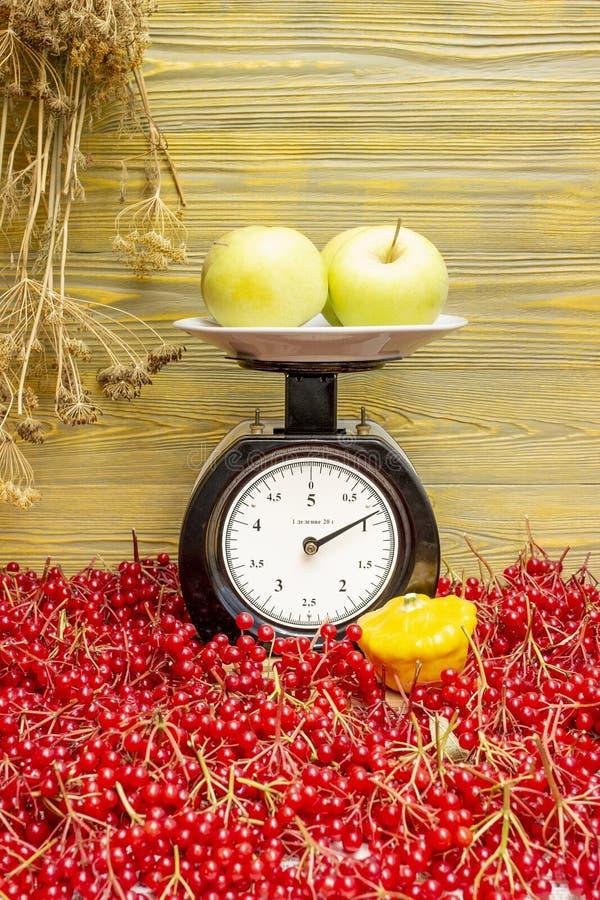 Le mele si trovano sulle scale immagine stock