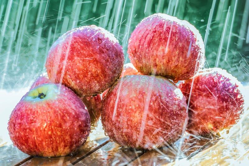 Le mele su una tavola nel giardino al di sotto di un'estate piovono immagine stock libera da diritti