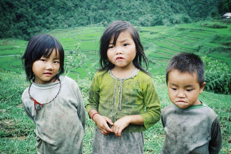 le membre mignon de tribu de hmong badine à côté de leur champ de ferme de famille image libre de droits