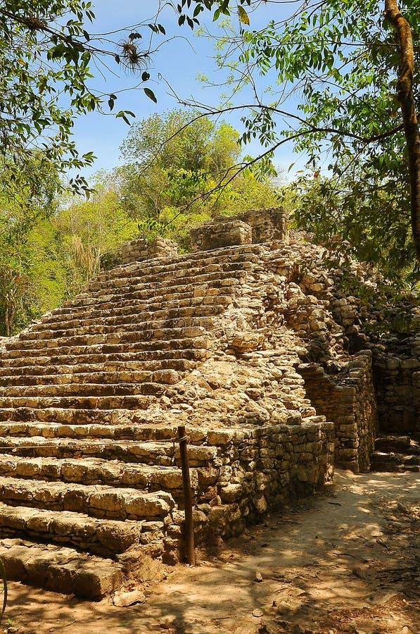 Le Mexique, sur le chemin à l'ascension de pyramide de Coba photo libre de droits