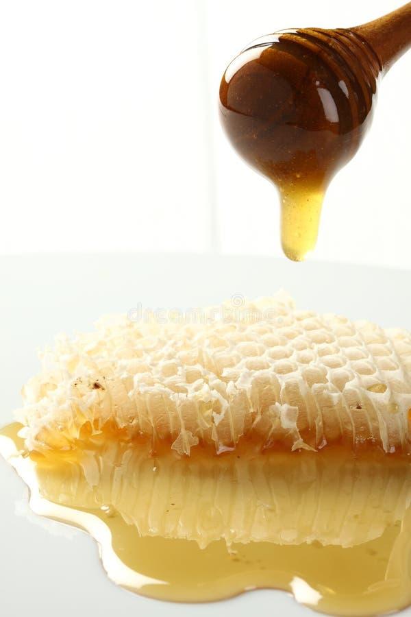 Le miel débordent la classe de nid d'abeilles. photos libres de droits