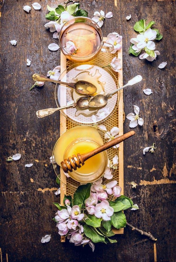 Le miel, le thé et le ressort fleurissent sur le nid d'abeilles, fond en bois foncé photographie stock
