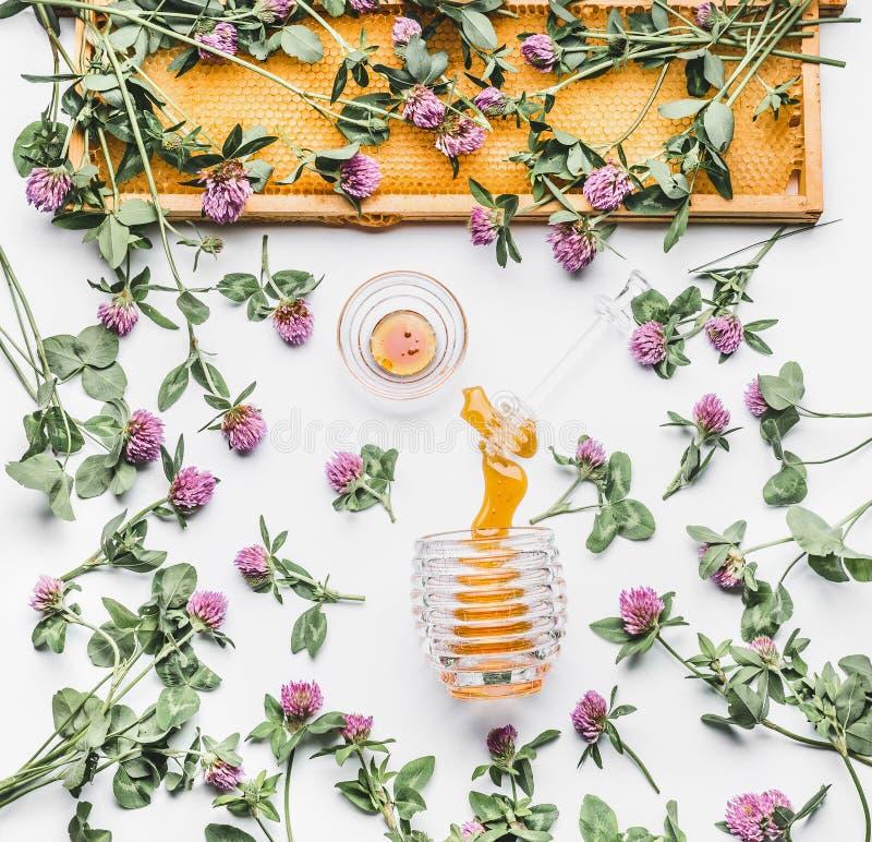 Le miel a versé du pot en verre avec le plongeur, le cadre de nid d'abeilles et les fleurs sauvages sur le fond blanc, vue supéri image libre de droits