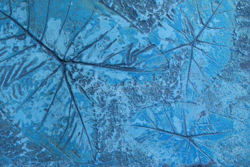 Le modèle de la feuille a embouti sur le revêtement bétonné en pastel bleu pour décorent des passages couverts dans le jardin illustration libre de droits