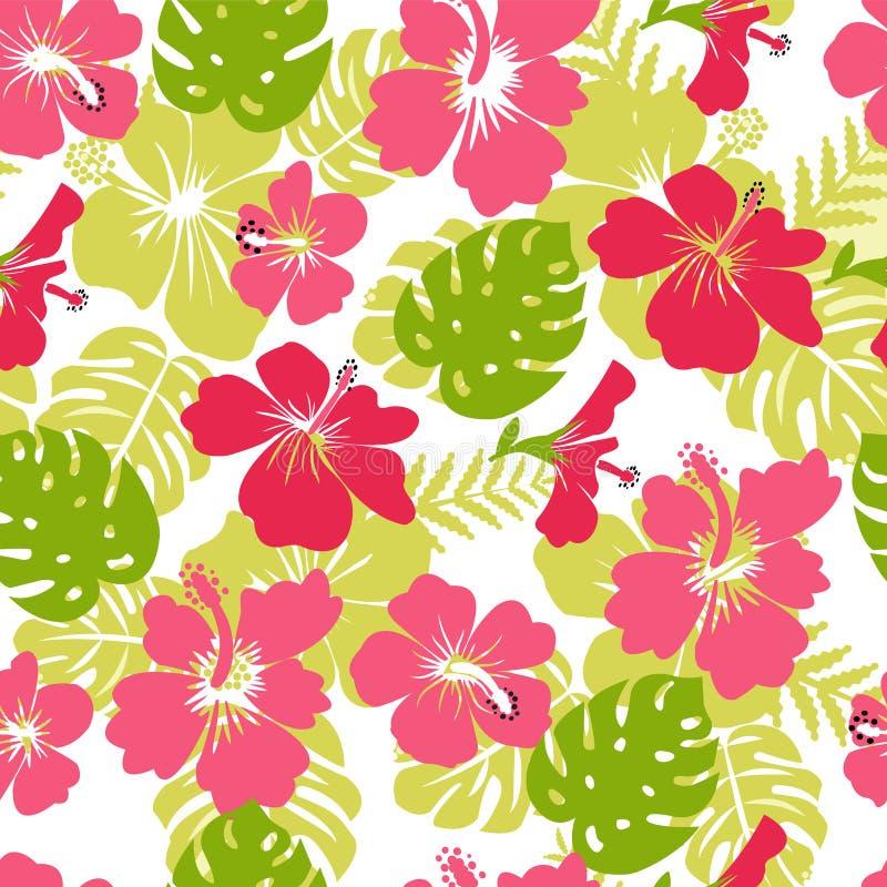 Le modèle des feuilles et de la ketmie tropicales de fleurs fleurissent illustration de vecteur