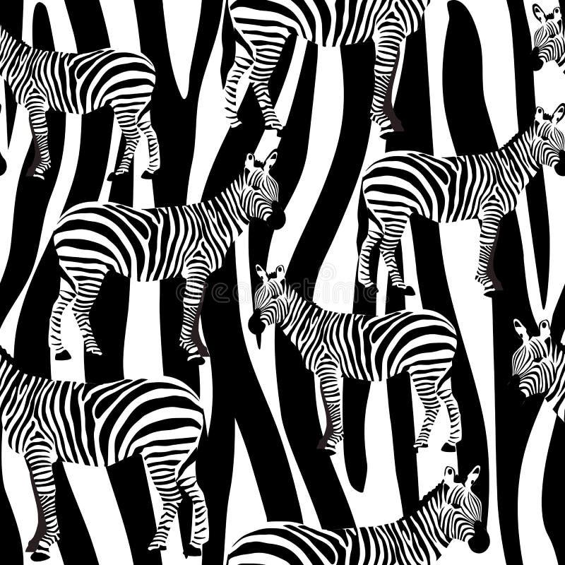 Le modèle extérieur sans couture de zèbre, les zèbres noirs et blancs répètent le modèle pour la conception de textile, impressio illustration libre de droits