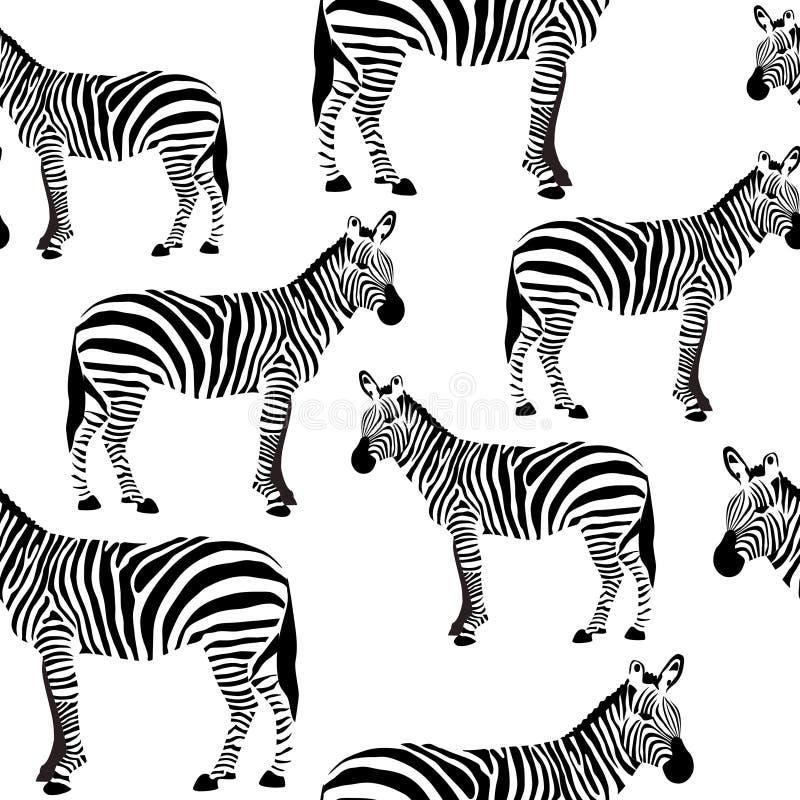 Le modèle extérieur sans couture de zèbre, les zèbres noirs et blancs répètent le modèle pour la conception de textile, impressio illustration de vecteur
