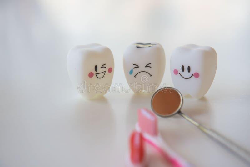Le modèle joue des dents en art dentaire sur un fond blanc images libres de droits