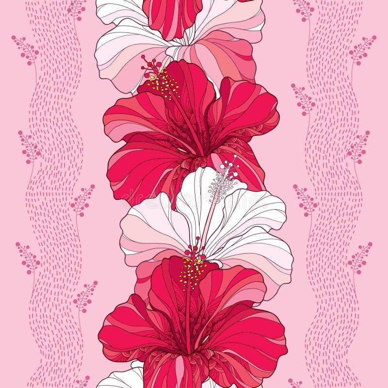Le modèle sans couture avec la ketmie chinoise fleurissent en rouge et dans le blanc sur le fond rose avec des rayures illustration de vecteur