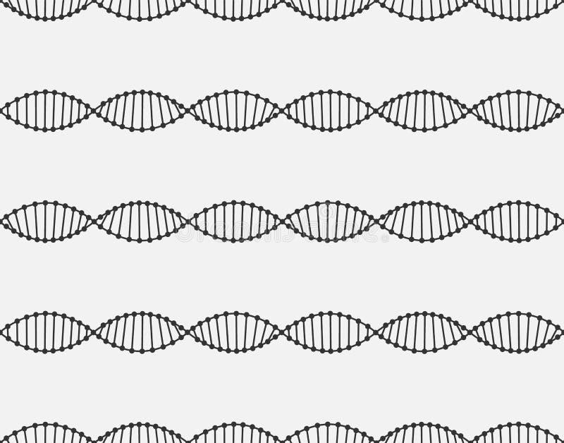 Le modèle sans couture d'une molécule d'ADN sont arrangés horizontalement Lignes noires sur le fond blanc illustration libre de droits