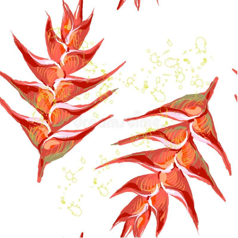 Le modèle sans couture de Heliconia fleurit le plantain sauvage, griffe de homard, fleur fausse d'oiseau-de-paradis, rostrata de  illustration libre de droits