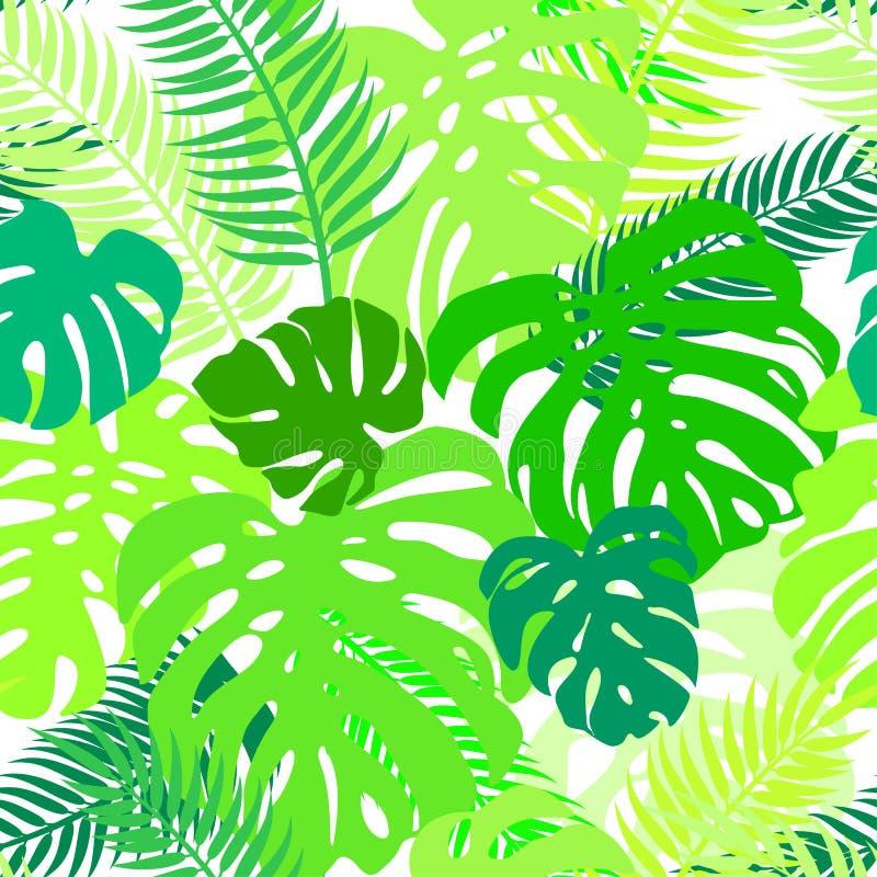 Le modèle sans couture de vecteur de la verdure laisse le monstera et la paume Ornement tropical exotique de répétition illustration libre de droits