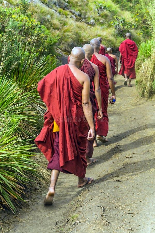 Le moine bouddhiste marche dans le Horton images libres de droits