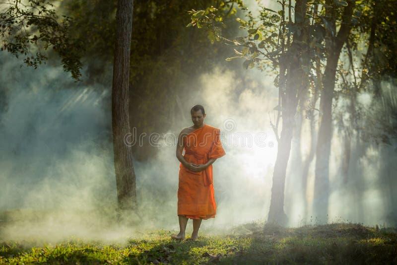 Le moine de méditation de Vipassana marche dans une forêt tranquille photo libre de droits