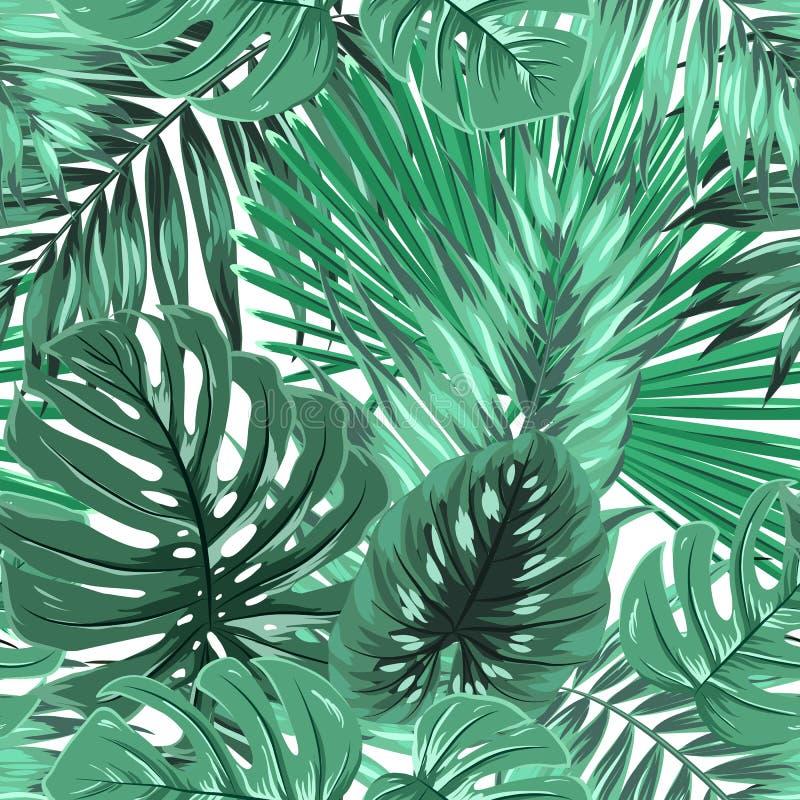 Le monstera tropical de paume laisse le modèle sans couture illustration de vecteur