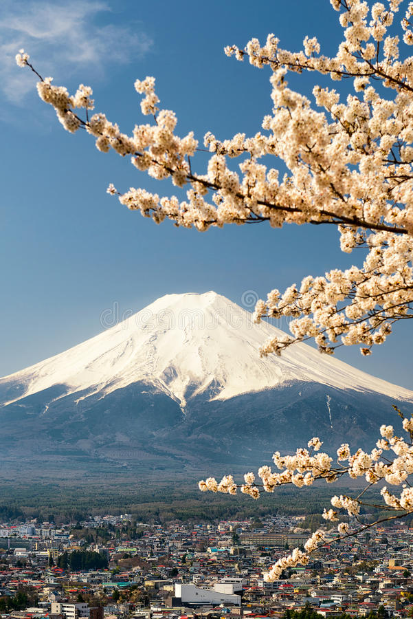 Le mont Fuji avec des branches de cerisier, Japon photo stock