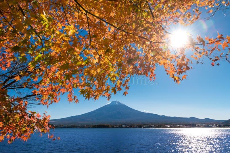 Le mont Fuji avec des feuilles d'érable photos libres de droits