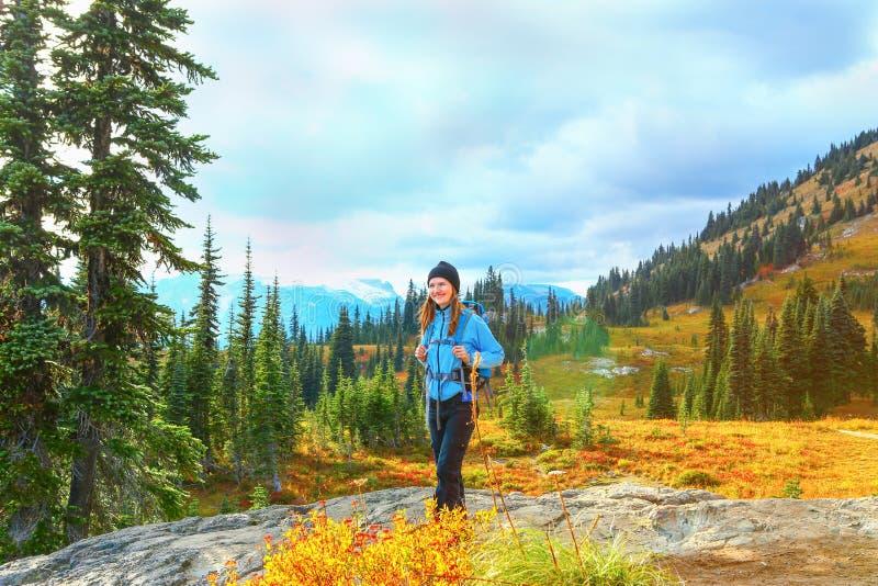 Le mont Rainier, Washington photo libre de droits