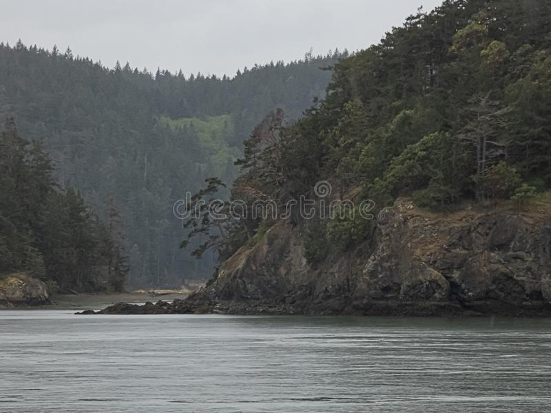 Le montagne rocciose del muschio e dell'albero aumentano sopra il suono di puget immagini stock