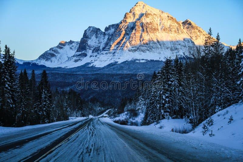 Le montagne rocciose majestuous su un roadtrip fra il diaspro ed Alberta su Alberta Highway 93, Alberta, Canada fotografia stock libera da diritti
