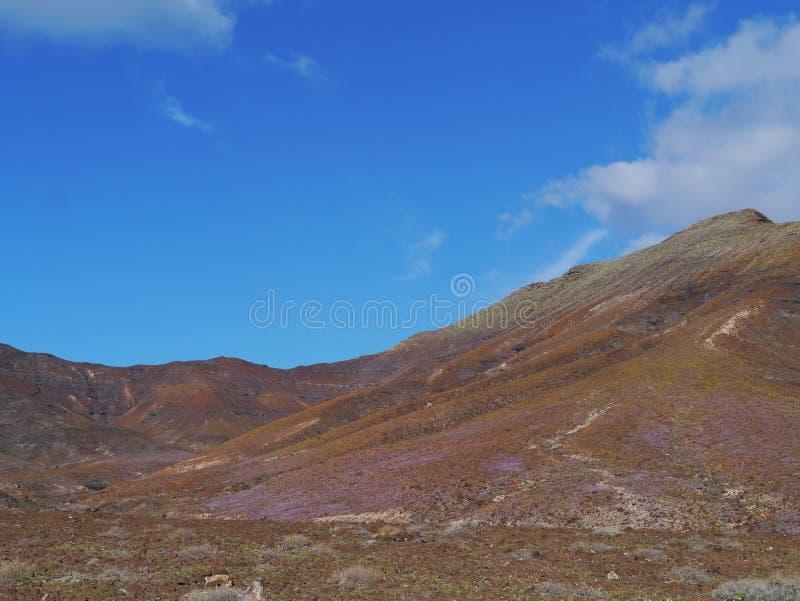 Le montagne variopinte sull'isola Fuerteventura immagine stock