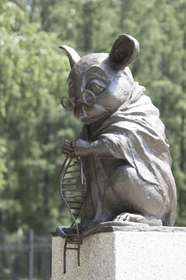 Le monument à la souris de laboratoire est une sculpture dans la ville de Novosibirsk en Sibérie, Russie Il est situé dans un par photos libres de droits