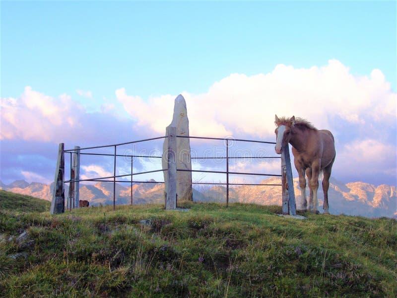 LE MONUMENT DE PYRÉNÉES MEGALITIC ONT LES VISITEURS CURIEUX photo libre de droits