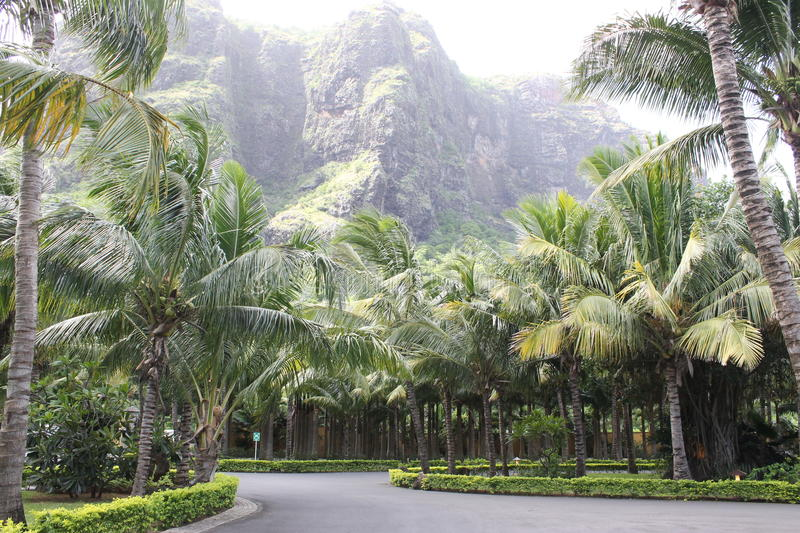 Le Morn Brabant mountain in Mauritius, Africa. A breathtaking scenery of Le Morn Brabant mountain in Mauritius stock photography