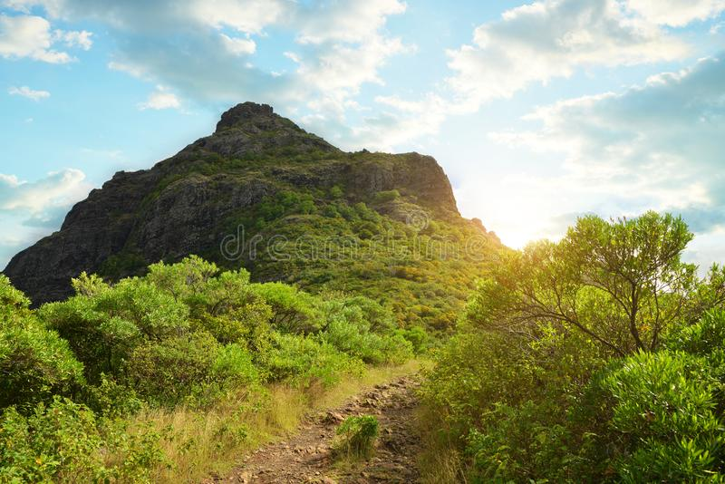 Le Morne Brabant mountain in Mauritius island. stock images