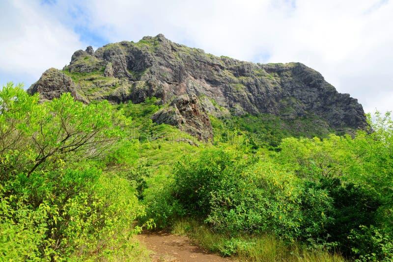 Le Morne Brabant mountain, Mauritius island. stock image