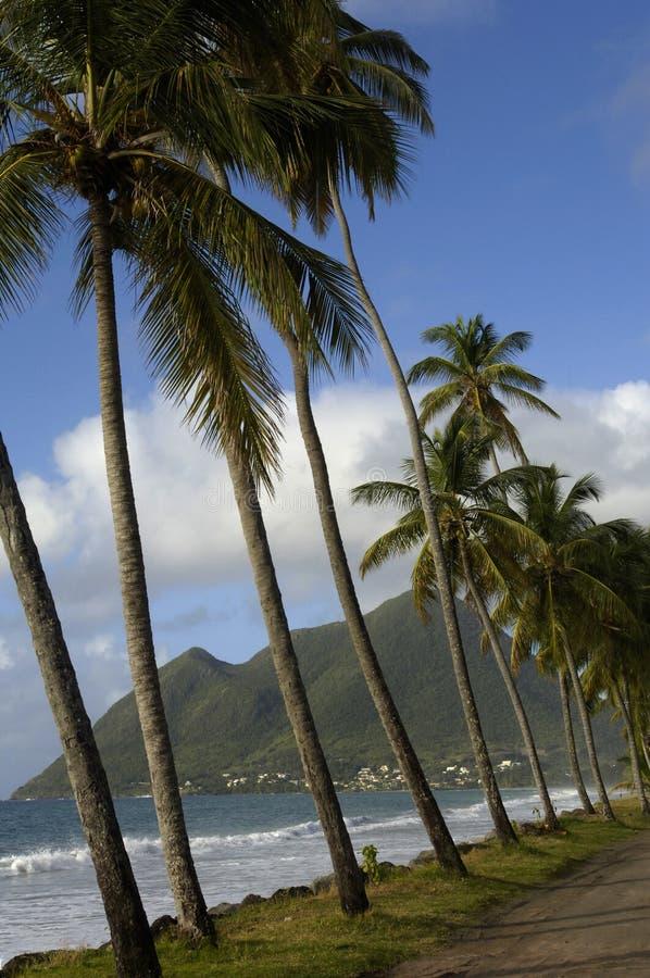 Le Morne Larcher in Martinique lizenzfreie stockbilder