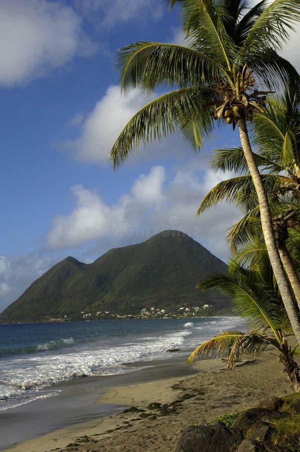 Le Morne Larcher in Martinique stockbilder