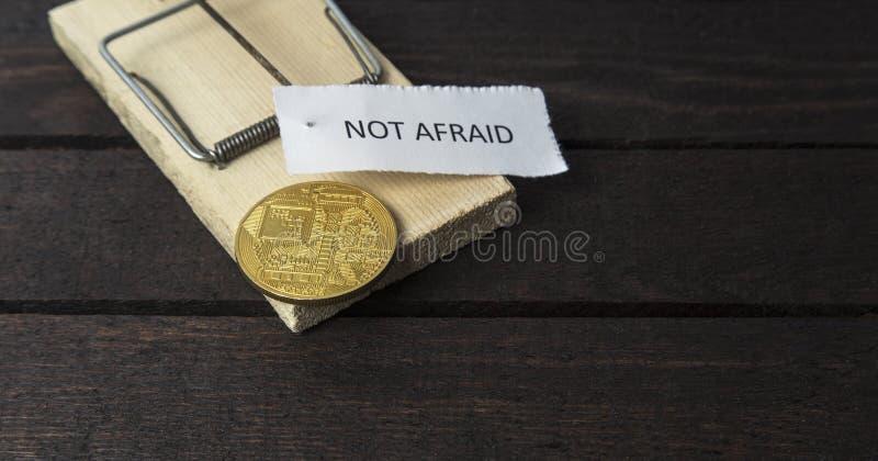 Le mot : Non effrayé goupillé sur le piège de souris avec le postérieur du bitcoin photos stock