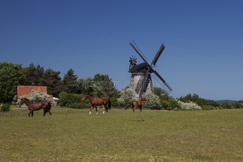 Le moulin à vent néerlandais dans le benz photos libres de droits