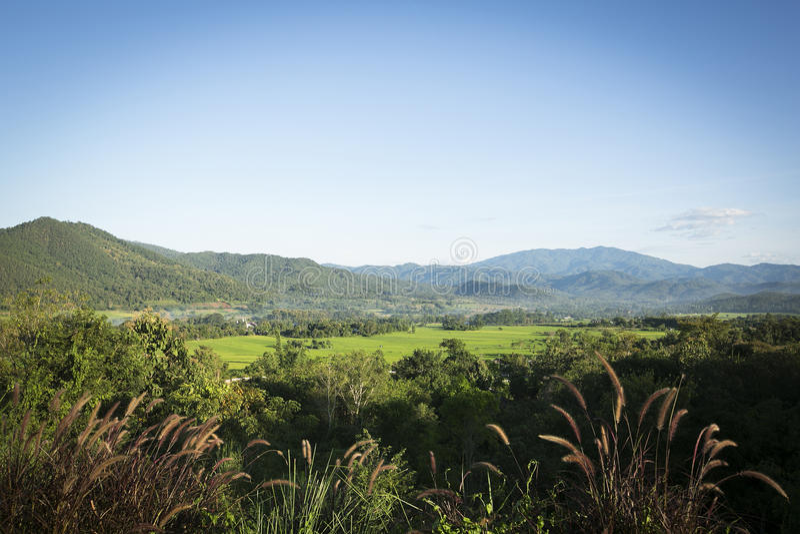 Le Mountain View photos stock