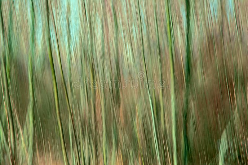 Le mouvement de résumé a brouillé le fond avec les lignes verticales dans les teintes vertes et brunes photos libres de droits