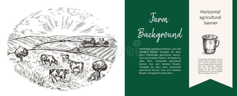 Le mucche pascono sul pascolo Illustrazione agricola nello stile di uno schizzo Insegna agricola orizzontale fotografia stock libera da diritti