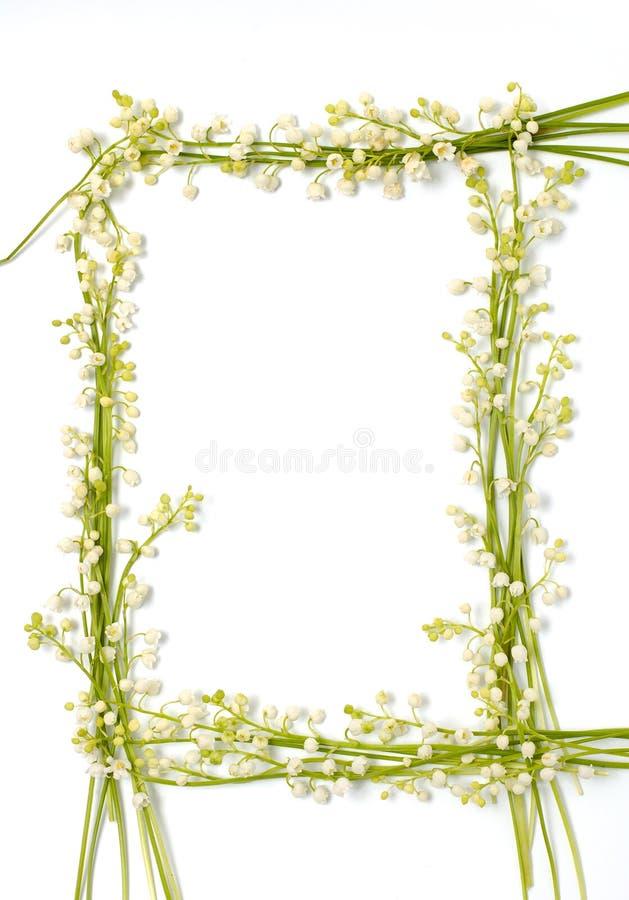 Le muguet fleurit sur le backgr d'isolement par cadre de papier de trame photo stock