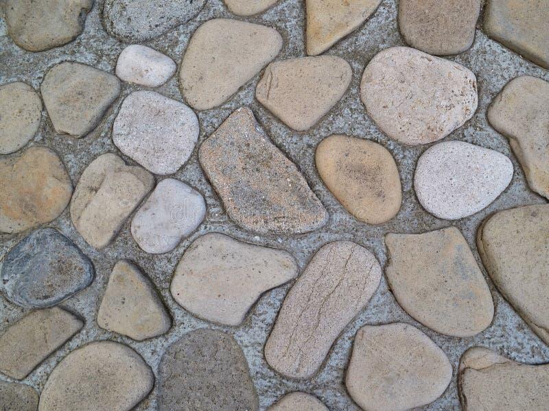Le mur décoratif pavé avec la mer plate de forme ronde lapide presque totalement submergé dans le ciment photographie stock