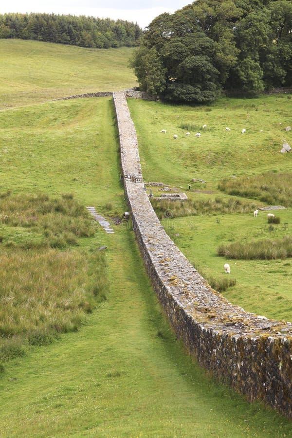 Le mur de Hadrian dans le Northumberland images stock