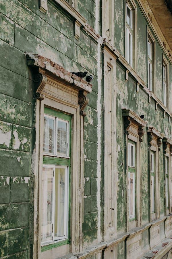 Le mur de la maison avec des pigeons sur la fenêtre photo libre de droits