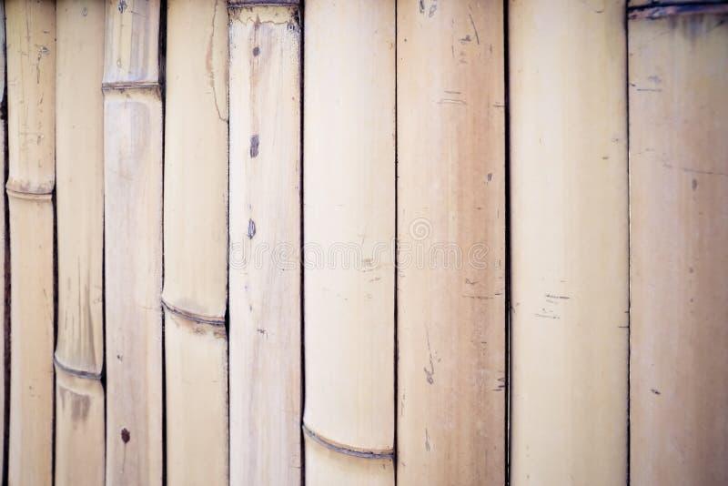 le mur en bambou sec images stock